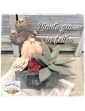 CARTAMODELLO PIANTE GRASSE...